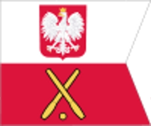 100px-POL_Flaga_Generał.svg